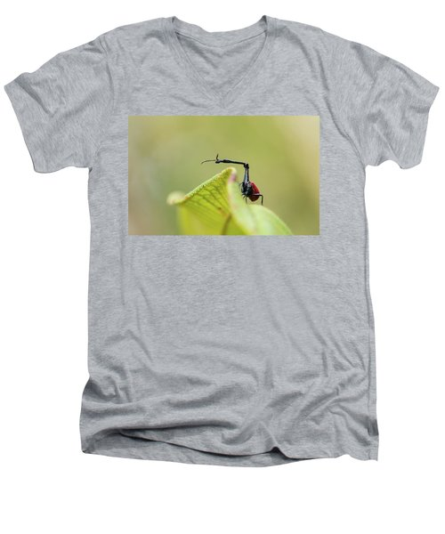 Men's V-Neck T-Shirt featuring the photograph The View From Up Here by Alex Lapidus