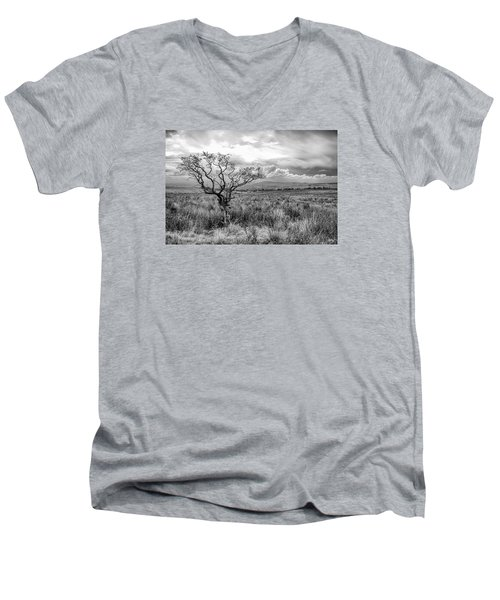 The Windswept Tree Men's V-Neck T-Shirt