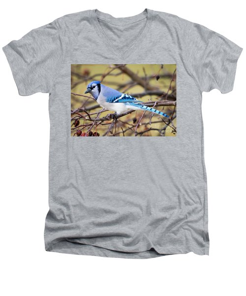 The Winter Blue Jay  Men's V-Neck T-Shirt