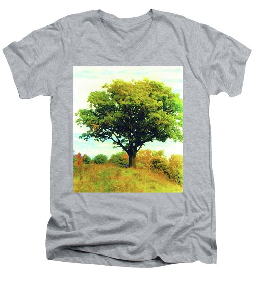 The Witness Tree Men's V-Neck T-Shirt
