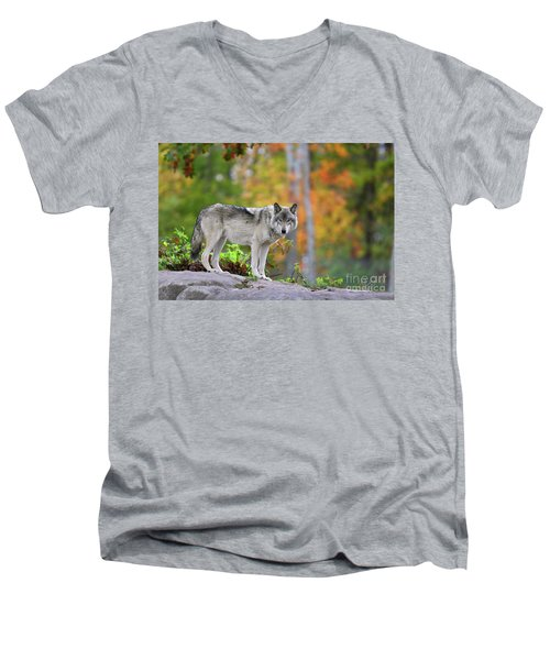 The Wolf. Men's V-Neck T-Shirt