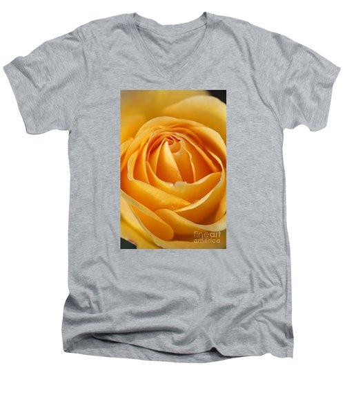 The Yellow Rose Men's V-Neck T-Shirt by Joy Watson