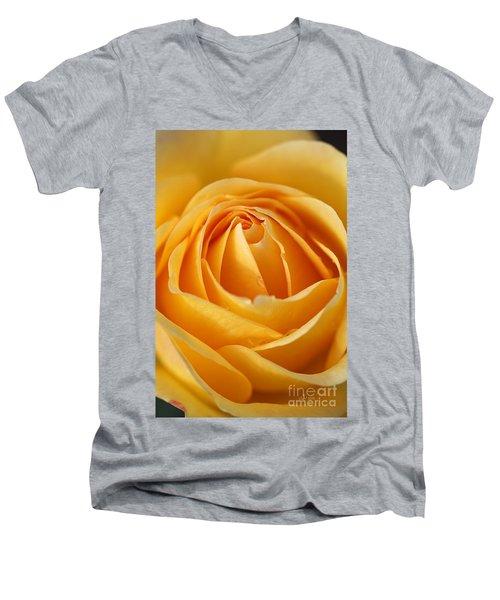 The Yellow Rose Men's V-Neck T-Shirt