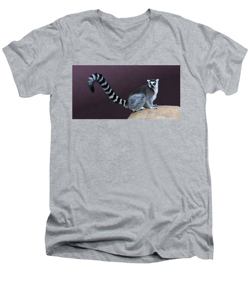 Thereby Hangs A Tail Men's V-Neck T-Shirt