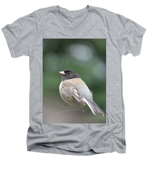 This Little Bird 2 Men's V-Neck T-Shirt by Brooks Garten Hauschild