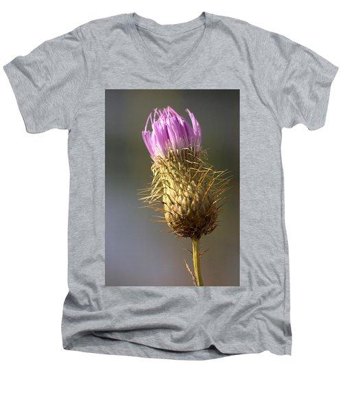 Thistle Men's V-Neck T-Shirt by Joseph Skompski