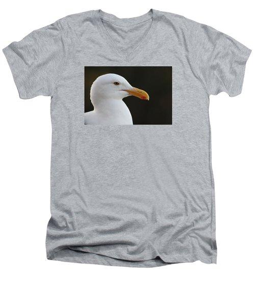 Thoughtful Gull Men's V-Neck T-Shirt