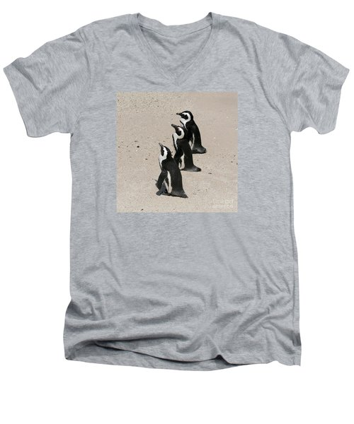 Three African Penguins Men's V-Neck T-Shirt