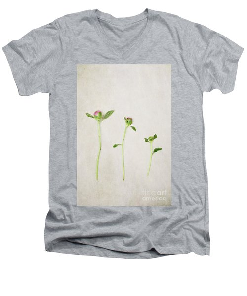Three Buds Men's V-Neck T-Shirt by Stephanie Frey