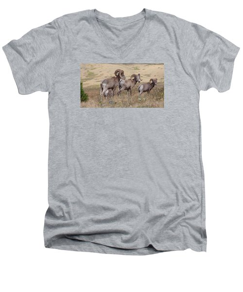 Men's V-Neck T-Shirt featuring the photograph Three Of A Kind by Fran Riley