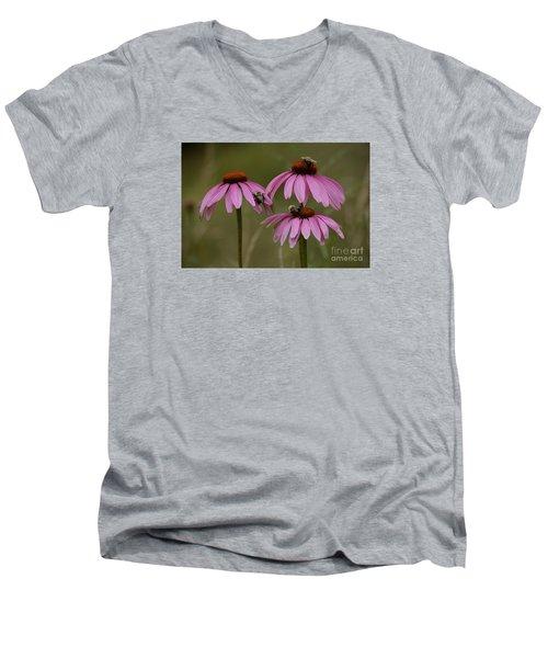 Three Men's V-Neck T-Shirt