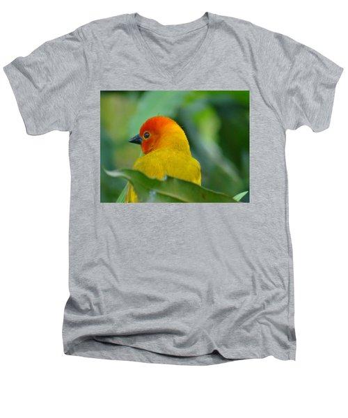 Through A Child's Eyes - Close Up Yellow And Orange Bird 2 Men's V-Neck T-Shirt by Exploramum Exploramum
