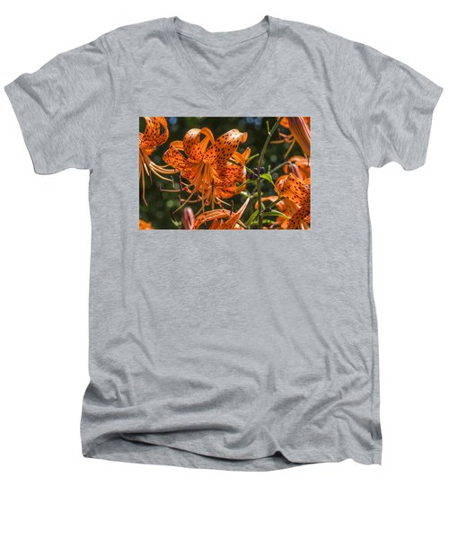 Tiger Lilies In The Sun Men's V-Neck T-Shirt
