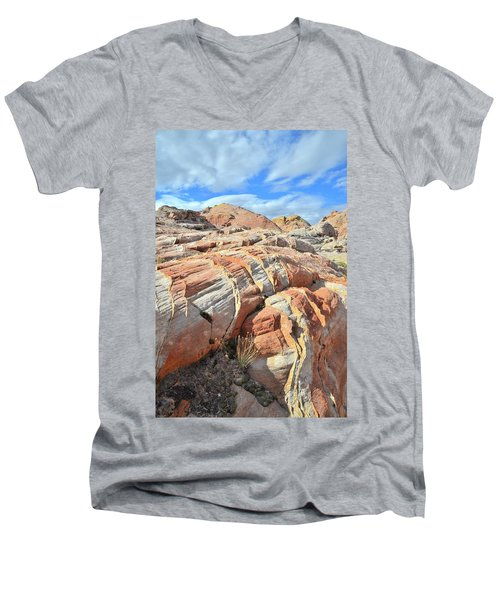 Tiger Stripes In Valley Of Fire Men's V-Neck T-Shirt by Ray Mathis