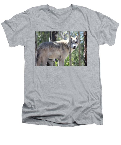 Men's V-Neck T-Shirt featuring the photograph Timber Wolf by Shane Bechler