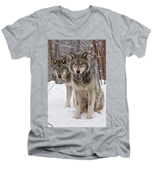 Men's V-Neck T-Shirt featuring the photograph Timber Wolves In Winter by Michael Cummings