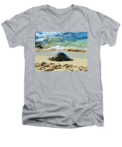 Time For A Rest Men's V-Neck T-Shirt by Craig Wood