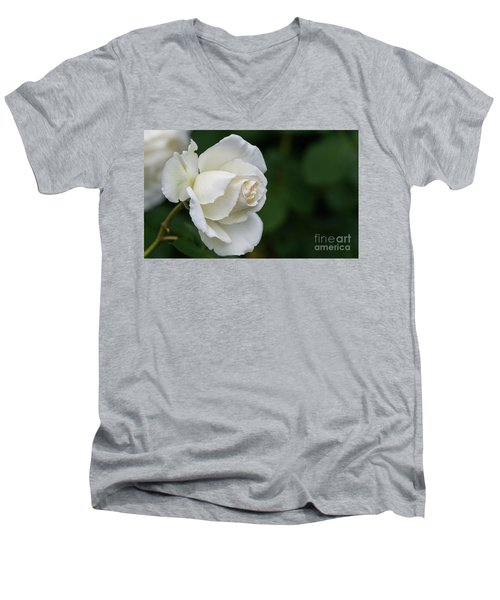 Tineke Rose 2 Men's V-Neck T-Shirt