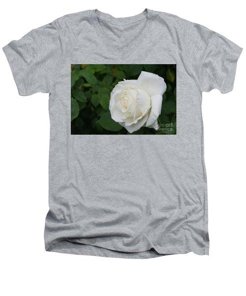 Tineke Rose 3 Men's V-Neck T-Shirt