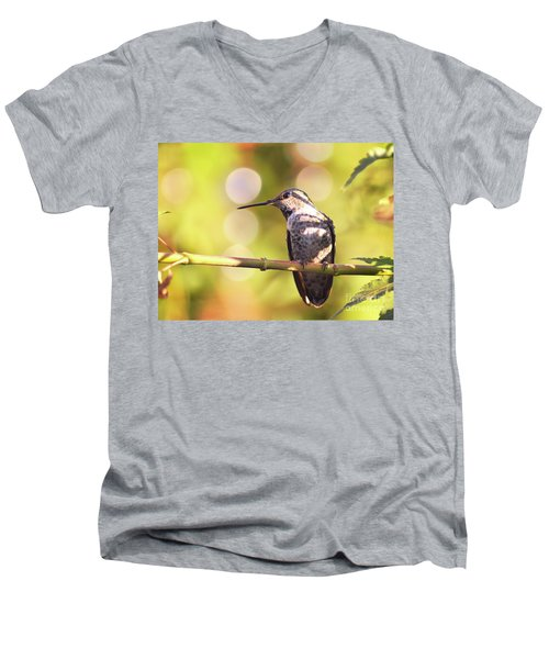 Tiny Bird Upon A Branch Men's V-Neck T-Shirt