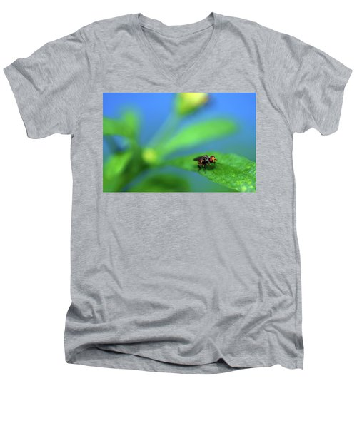 Tiny Fly On Leaf Men's V-Neck T-Shirt