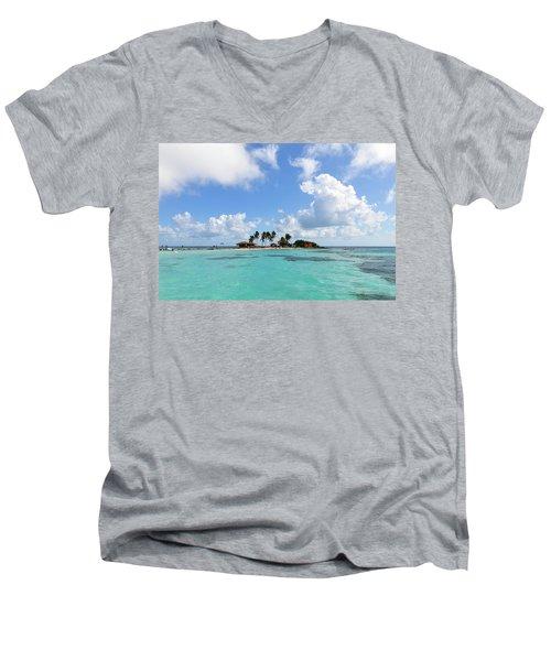Tiny Island Men's V-Neck T-Shirt