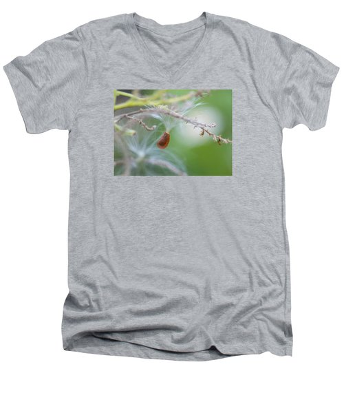 Tiny Seed Men's V-Neck T-Shirt