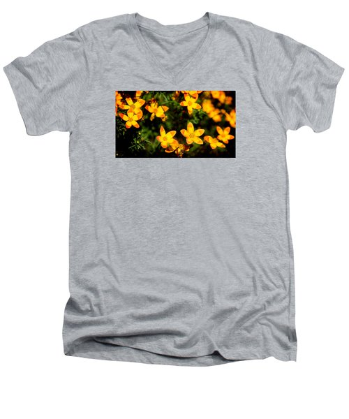 Tiny Suns Men's V-Neck T-Shirt by Milena Ilieva