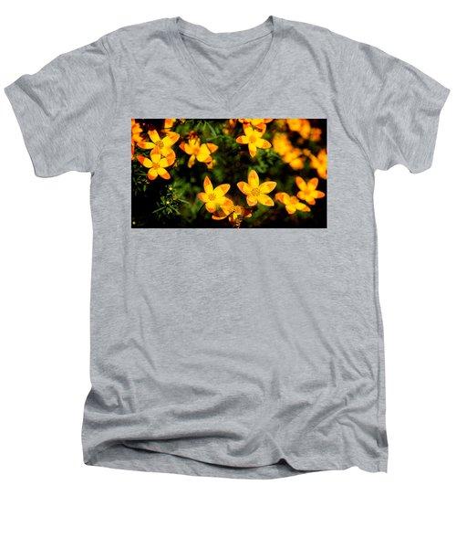 Tiny Suns Men's V-Neck T-Shirt