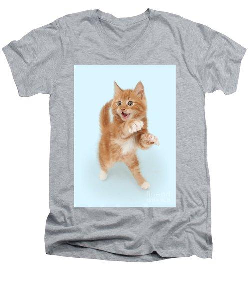 Tiny Tiger Men's V-Neck T-Shirt