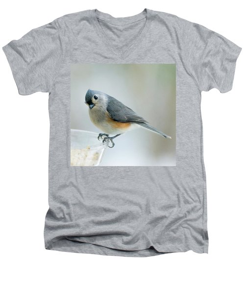 Titmouse With Walnuts Men's V-Neck T-Shirt