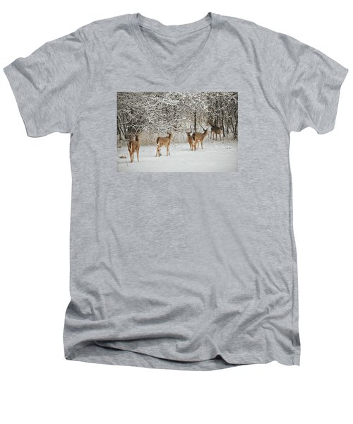 Men's V-Neck T-Shirt featuring the photograph To Greet A Friend by Nikki McInnes