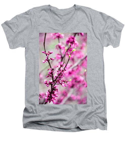 Touch Of Spring Men's V-Neck T-Shirt