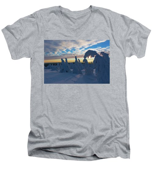 Touched From The Winter Sun Men's V-Neck T-Shirt