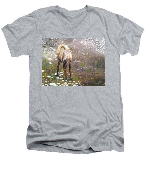 Tourist Attraction Men's V-Neck T-Shirt