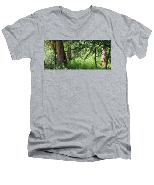 Tranquility Men's V-Neck T-Shirt by Roena King