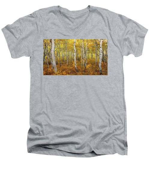 Transition Men's V-Neck T-Shirt