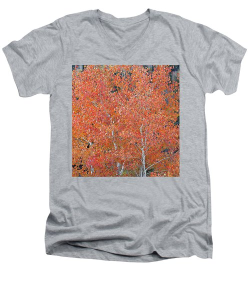 Translucent Aspen Orange Men's V-Neck T-Shirt