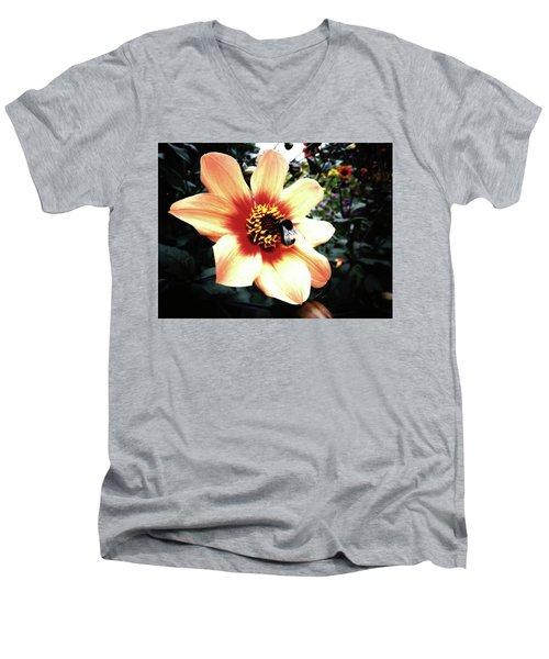 Translucent Wings Men's V-Neck T-Shirt