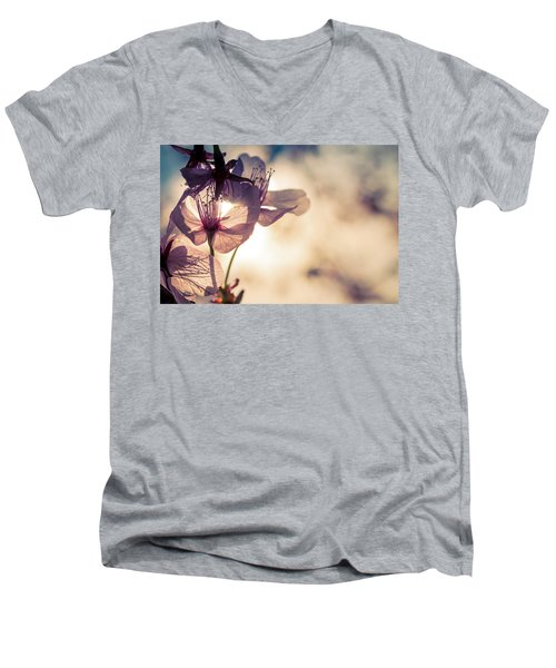 Tree Blossoms Backlit By The Afternoon Sun Men's V-Neck T-Shirt