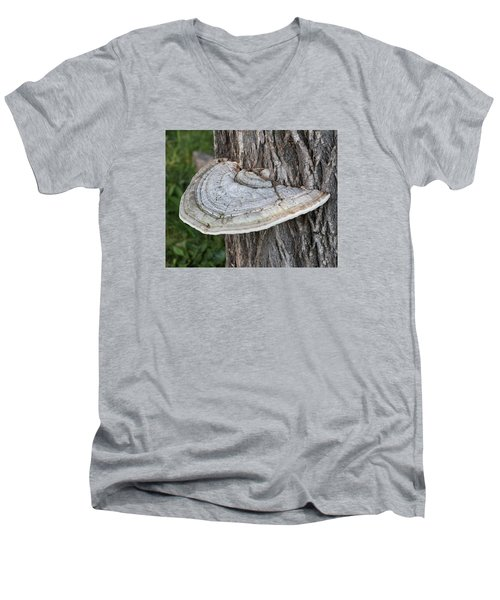 Tree Fungus Men's V-Neck T-Shirt