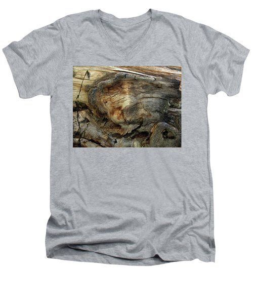 Men's V-Neck T-Shirt featuring the photograph Tree Memories # 36 by Ed Hall