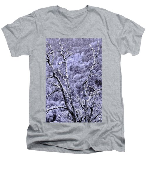 Tree Sprite Men's V-Neck T-Shirt