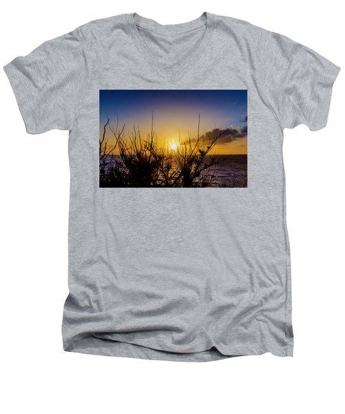Tree Sunset Men's V-Neck T-Shirt