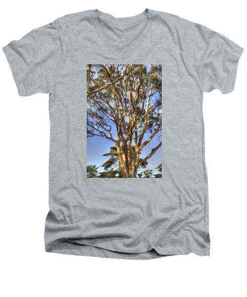 Tree To The Heavens Men's V-Neck T-Shirt