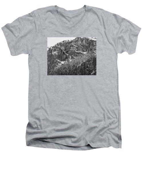 Treefall Men's V-Neck T-Shirt