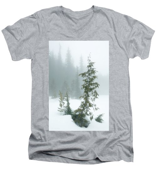 Trees In Fog Men's V-Neck T-Shirt