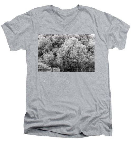 Trees On The River Men's V-Neck T-Shirt