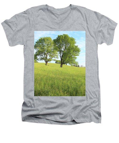 Summer Trees 2 Men's V-Neck T-Shirt