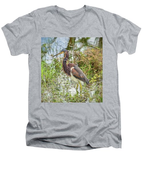 Tri-colored Heron Men's V-Neck T-Shirt